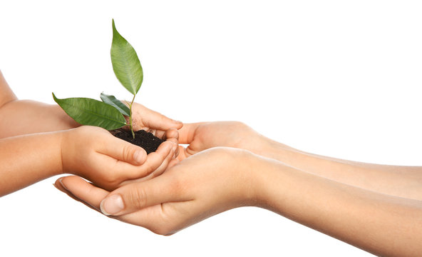 Woman and her child holding soil with green plant in hands on white background. Family concept