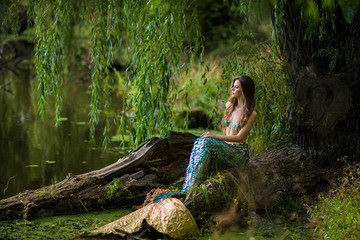 Wall Murals Fantasy Landscape Gorgeous woman with long brown hair and dressed like a mermaid sits on the stone over water