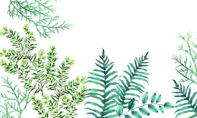 Elegant tropical leaves