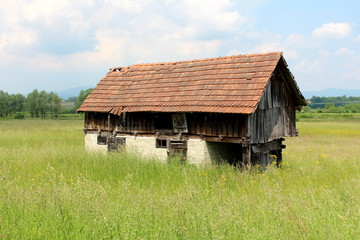 Dilapidated abandoned old wooden barn with brick foundation made of old wooden boards and broken roof tiles surrounded with tall green grass and flowers with cloudy blue sky in background