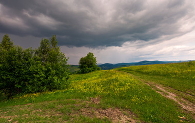 path across the grassy hill. lovely summer scenery. hiking and outdoor activities concept. dark cloudy sky.
