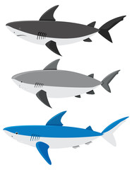 A Set of Sharks on White Background