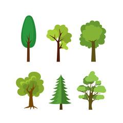 Six trees set,isolated on white background