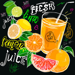 chalk drawn fresh juice orange. Colorful Label poster stickers food fruits vegetable chalk sketch style, food and spices. Lemon citrus. Bio eco vegetarian raw farm fresh organic. Hand drawn vector