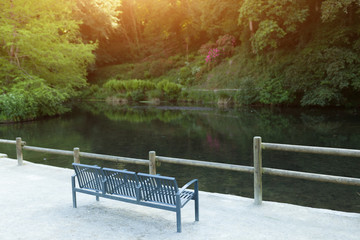 metall bench on the lake shore, on a background of green forest