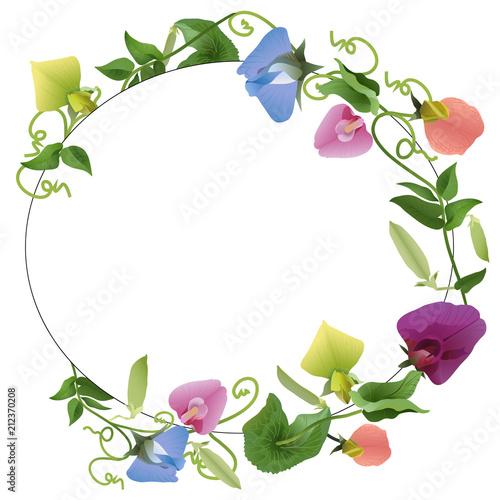 oval frame ornament flowers pea\