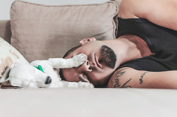 jack Russel sleeping with owner