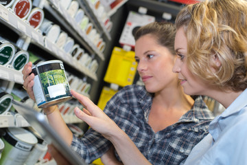 attractive young women discussing and selecting paint