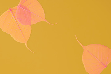 Pink leaves on the yellow background.
