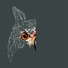 Low poly triangular and wireframe owl face on dark background, symmetrical vector illustration EPS 10 isolated.  Polygonal style trendy modern logo design. Suitable for printing on a t-shirt.