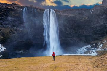 Wall Mural - Seljalandsfoss waterfall in Iceland. Guy in red jacket looks at Seljalandsfoss waterfall.