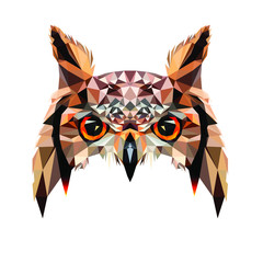 Low poly triangular owl face on white background, symmetrical vector illustration EPS 10 isolated.  Polygonal style trendy modern logo design. Suitable for printing on a t-shirt or sweatshirt.