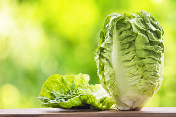 lettuce on the wooden table with green background