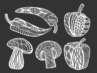 Vector illustration doodle boho style.