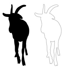 isolated silhouette of goat on white background