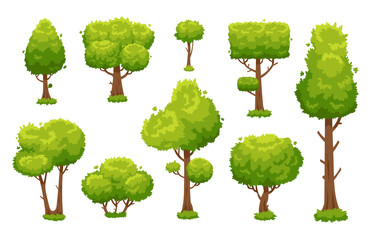 Cartoon green tree. Environmental forest or park trees isolated for vector illustration background