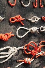 Many types of knots demonstrated on a learning display. Various methods of fastening and securing ropes