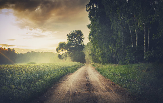 Scenic Empty Forestl Road at Misty Sunset