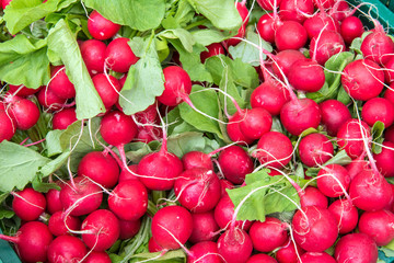 Pile of red radish for sale at a market
