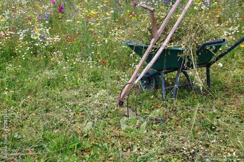 Eine Blumenwiese Wird Gemaht Stockfotos Und Lizenzfreie Bilder Auf