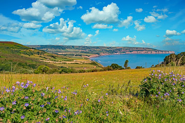 Robin Hoods Bay in the North Yorkshire Moors National Park viewed on a summers day from Ravenscar