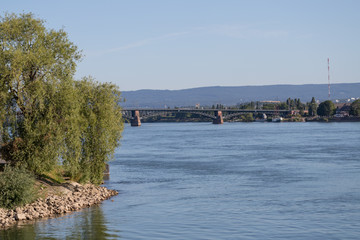 Rheinufer in Mainz an einem Sommertag
