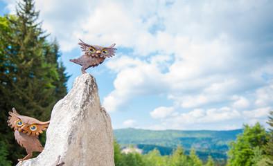 sowy w górach