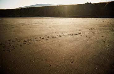 Black sandy in sunset. Northern