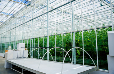 The frame of a modern greenhouse against the sky