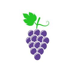 Grape illustration. Vector. Isolated.
