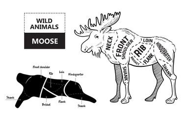 Cut of elk set. Poster Butcher diagram - desert-ship. Vintage typographic hand-drawn. Vector illustration