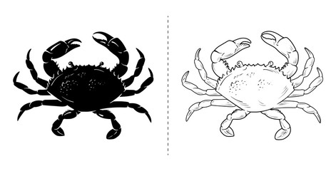 Crab silhouette sea animal. Vector illustration on white background