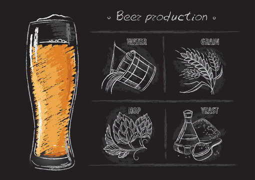 Vintage hand drawn vector illustrations of brewers components