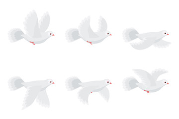 Cartoon flying dove animation sprite isolated on white background