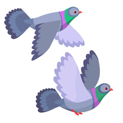 Illustration of two pigeons flying isolated on white background