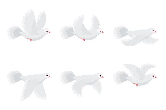 Cartoon flying dove animation sprite isolated on white background