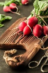 Fresh bunch of radish on a cutting board