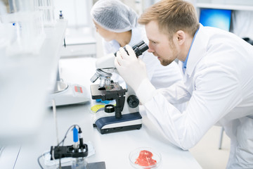 Side view portrait of modern young scientist looking in microscope while doing research in medical laboratory