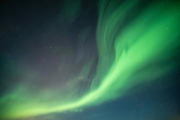 Beautiful Northern lights, Aurora borealis dancing on night sky