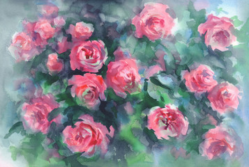 pink roses in green background watercolor