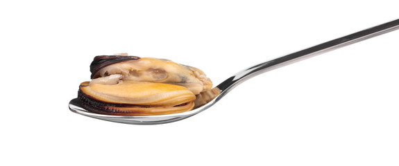 mussel with spoon isolated on white background