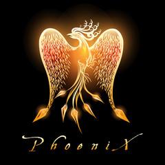 Burning Phoenix Bird on Black Background