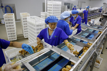 Workers prepare recently hatched layer chicks for shipment to customers at the Huayu hatchery in Handan