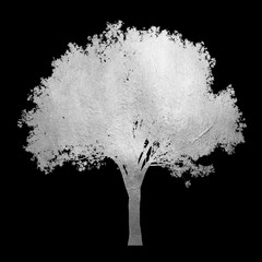 Shiny silver tree with leaves isolated on black background. Creative abstract