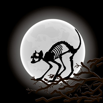 Cat's skeleton on the tree in the Moon light. Vector illustration.