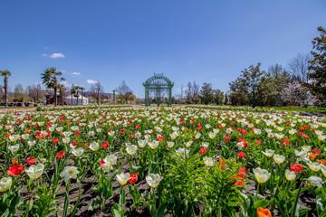 Die vielseitigen Blumengärten Hirschstetten mit vielen Themengärten, Palmenhaus und einen kleine ZOO in Wien an einem Frühlingstag