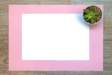 Blank on a white paper with pink paper and succulent plant on a desk. Minimalist idea