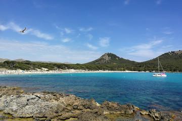 Mallorca, Cala Ratjada, Cala Agulla, Boot, Möwe
