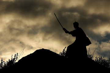 Fighter with a sword silhouette a sky ninja