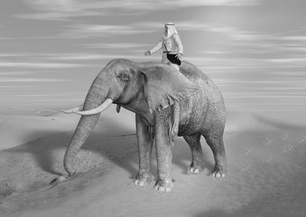 Black and White  Illustration of Desert Adventurer Riding Elephant